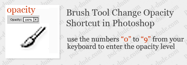 Shortcut Keys For Using Photoshop Brushes
