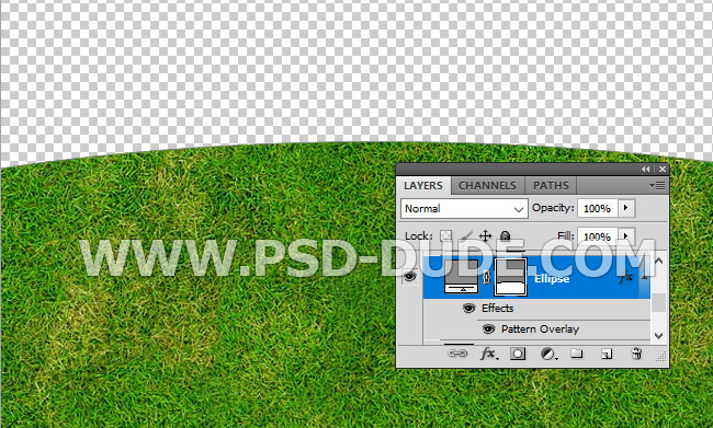 grass seamless pattern for photoshop