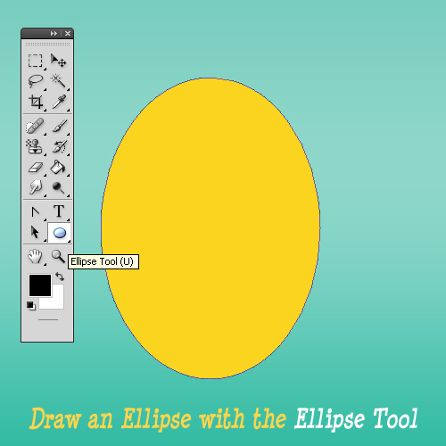 Draw Egg Shape With The Ellipse Tool In Photoshop