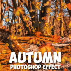How to Change Season Autumn Effect in Photoshop psd-dude.com Tutorials