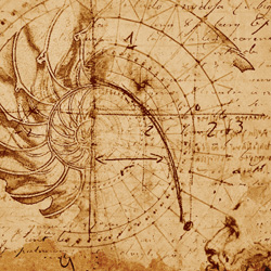 Lost Page Leonardo Da Vinci Codex The Golden Spiral