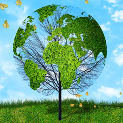 Create a Green Earth Tree Environment Background in Photoshop
