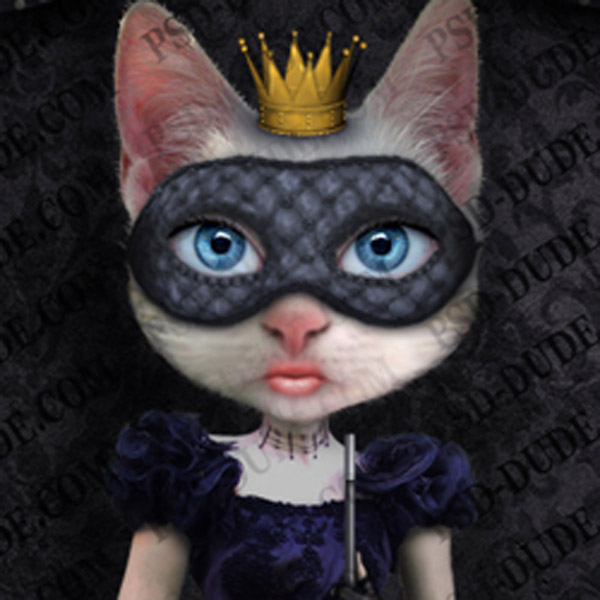 Photoshop Cat Princess Tutorial