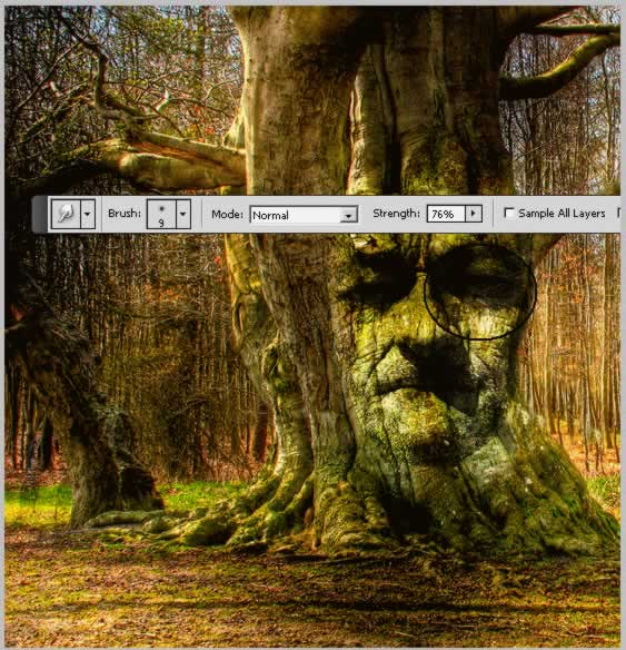 lost-princess-in-the-magic-forest tutorial intermediary image