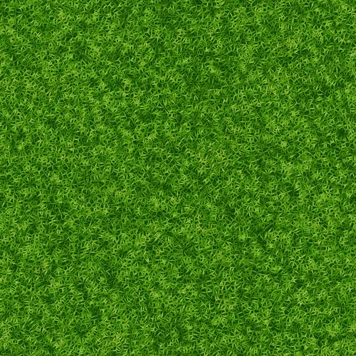 360 Grass