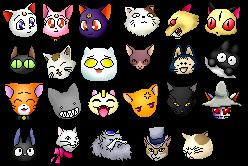 Anime