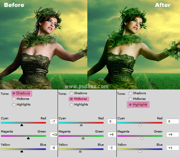 Blending and Adjustments in Photo Manipulation