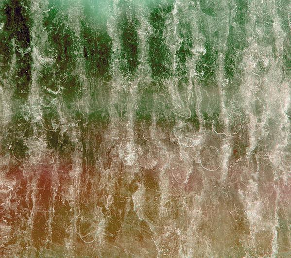 Free green orange dirty window glass texture for layers by pinksherbet photoshop resource collected by psd-dude.com from flickr