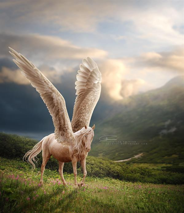 White Horse with Wings Fairy Tale Photoshop Work