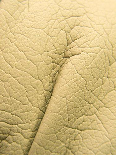 Leather texture by 28481088@N00 photoshop resource collected by psd-dude.com from flickr