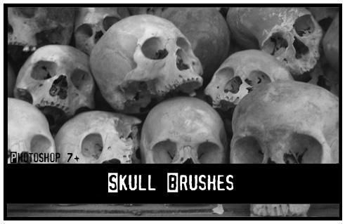 Skull