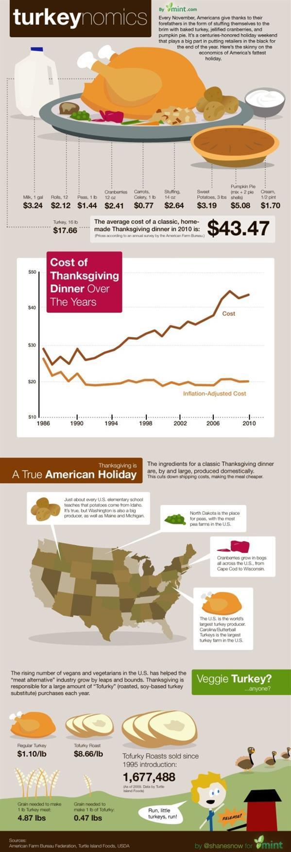Christmas Turkey Info Graphic