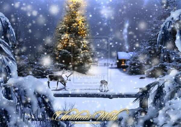 Magic Christmas Night Greeting Card