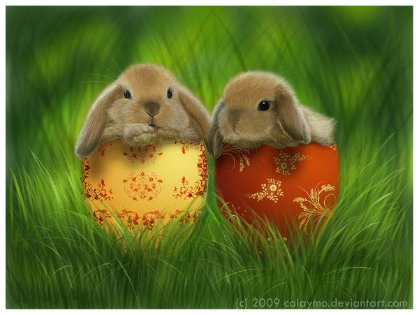 Pretty