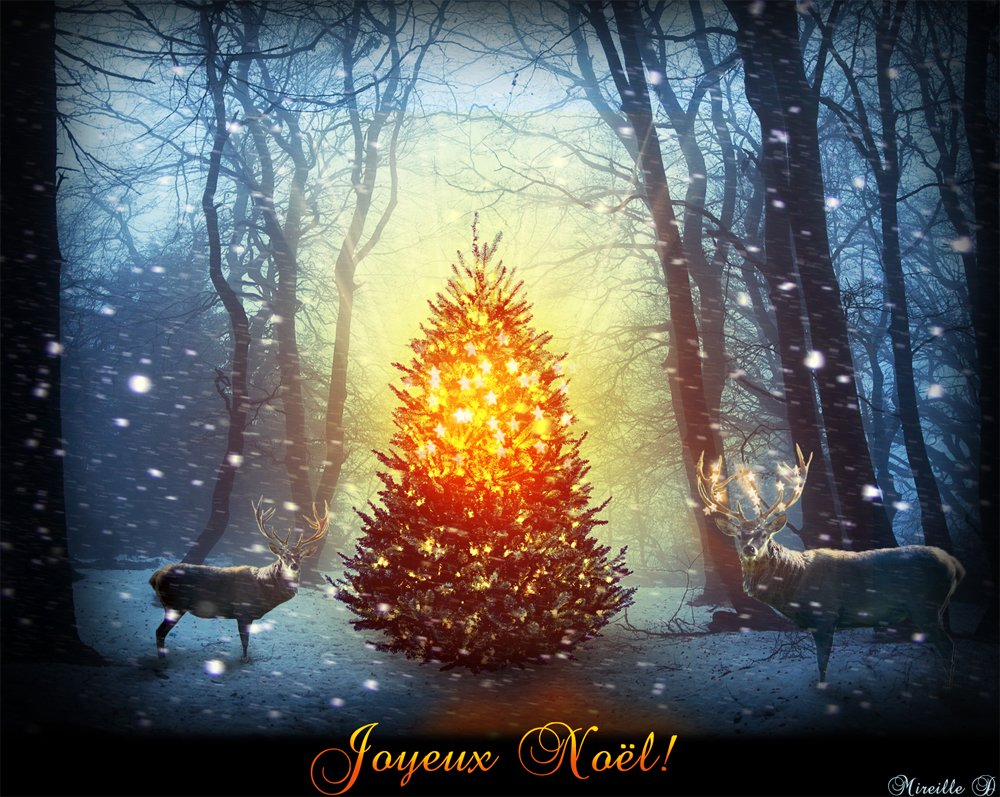 Magic Christmas Tree Photoshop Manipulation Tutorial ...