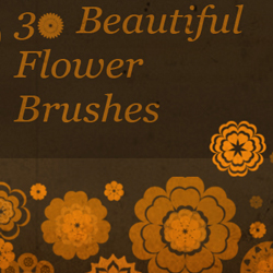 Floral Brushes My First Photoshop Brush Set | PSDDude psd-dude.com Resources