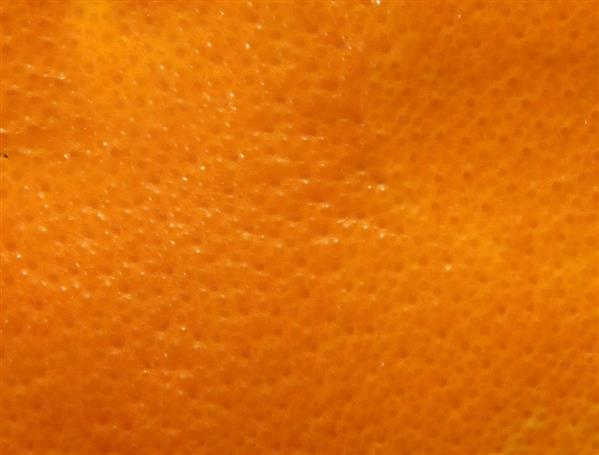 Fruit Orange Skin Pattern