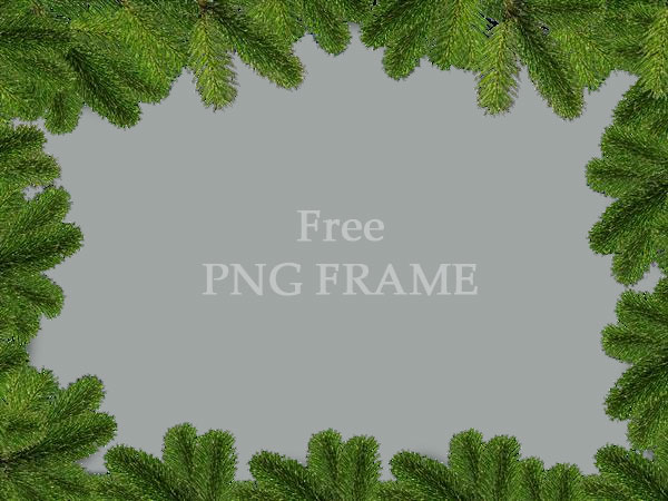 Christmas Background With Fir Branches Free Download