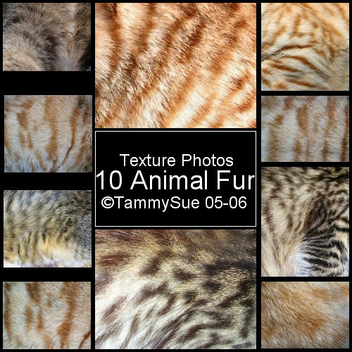 Animal Fur Texture by TammySue photoshop resource collected by psd-dude.com from deviantart