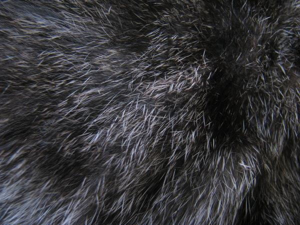 Black Gray Fur Texture