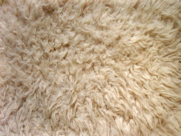 Carpet Textures Psd Carpet Vidalondon