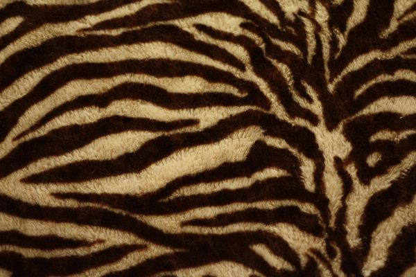 Zebra texture Background