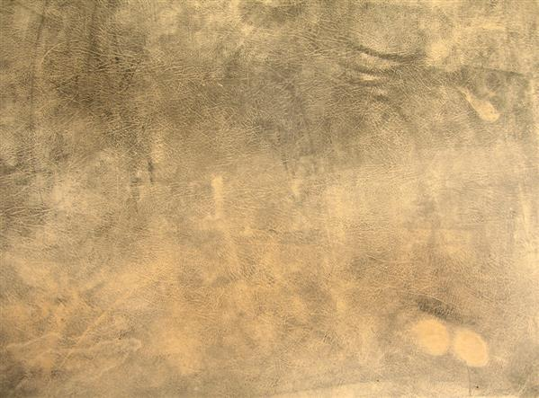 Dusty Old Grunge Leather Skin Background