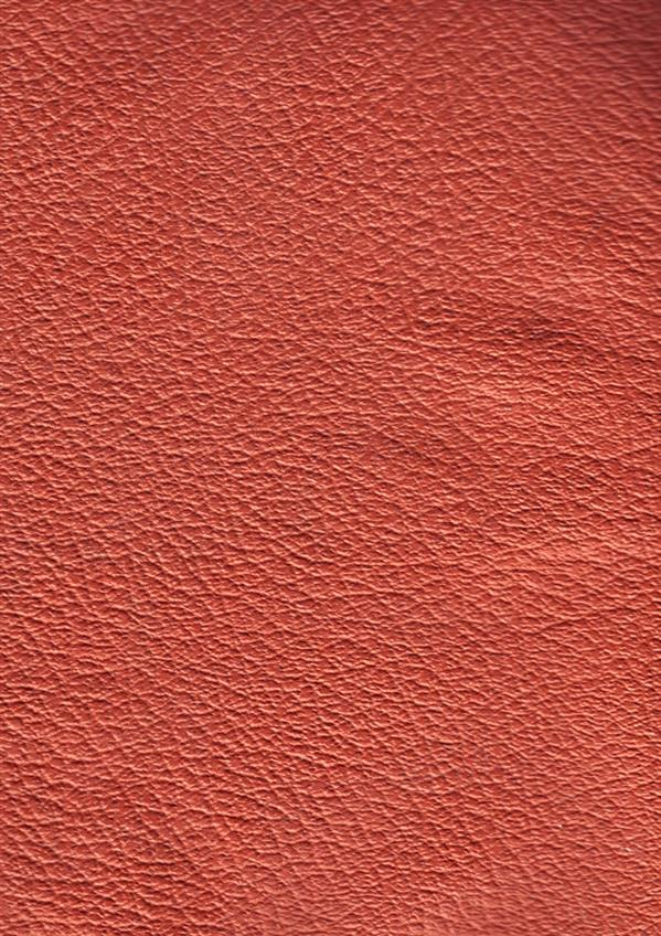 Red Leather Free Texture