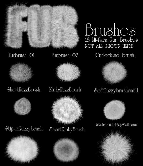 Drawing Animal Hair Fur Brushes