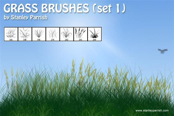 Grass Brushes for Creating Grass Borders in Photoshop