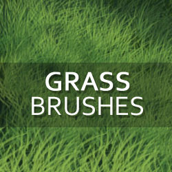 Grass and Foliage Photoshop Brushes psd-dude.com Resources