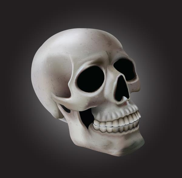 Create a skull with adobe illustrator