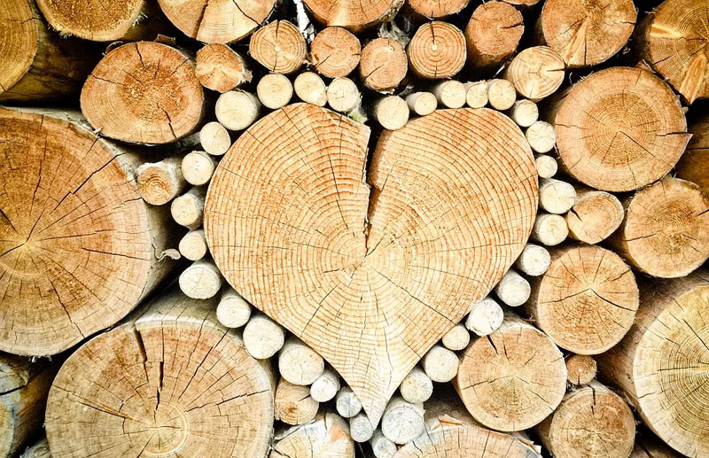Nature Background Heart Shape