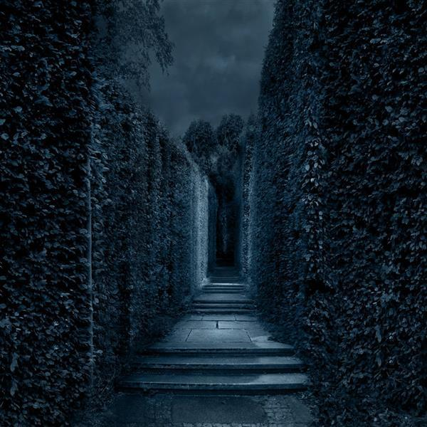 Premade BG Dark Labyrinth Photo Manipulation