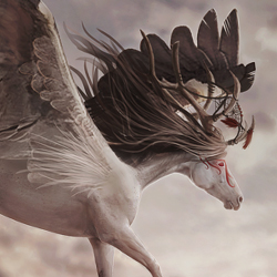 Beautiful Horse Animal Inspired Photoshop Manipulations psd-dude.com Resources