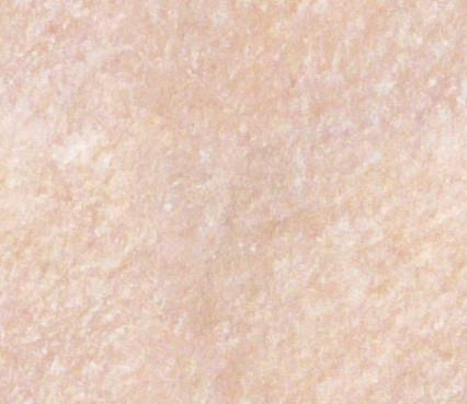 Tilable skin texture by AlfredAskew photoshop resource collected by psd-dude.com from deviantart
