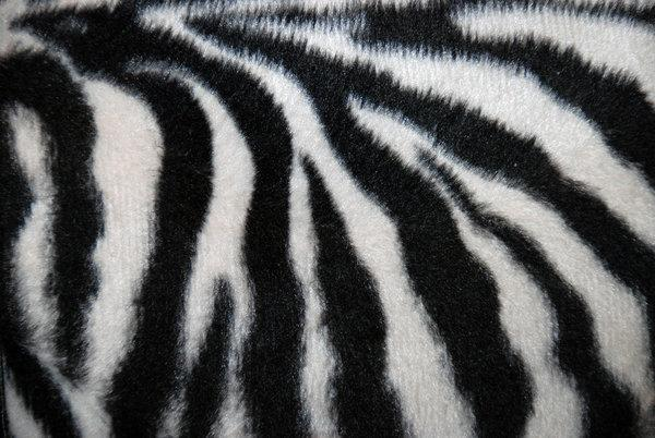Zebra Black and White Fur