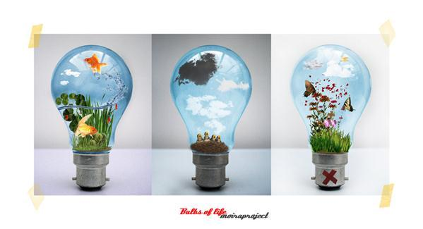 3 Light Bulb Creative Ideas