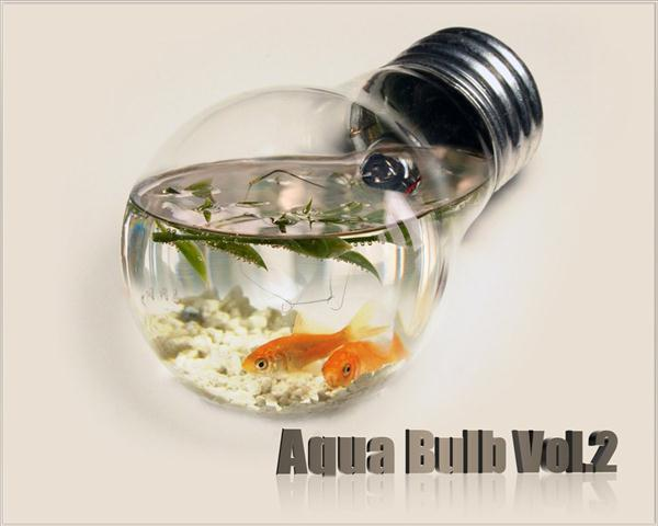 Aqua Light Bulb Photo Manipulation