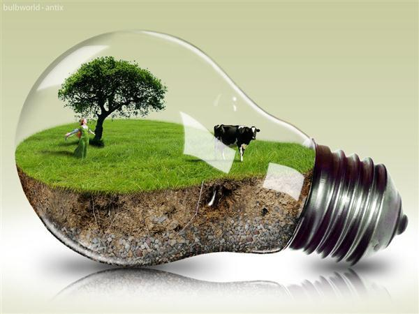 Bulb World Photo Manipulation