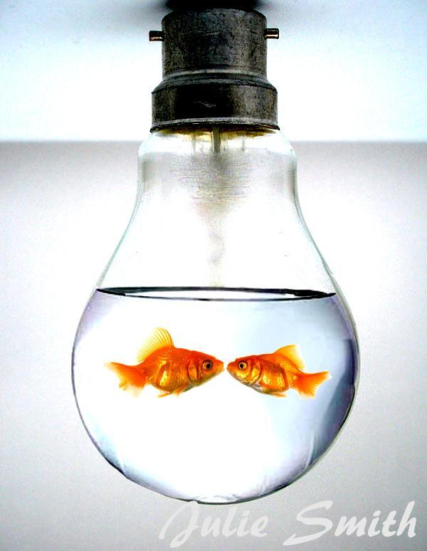 Fishes inside a Light Bulb Surreal Photo Manipulation
