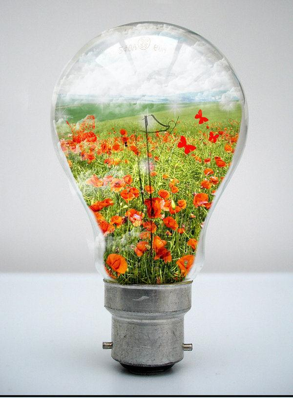 My world in a Light Bulb Photo Manipulation