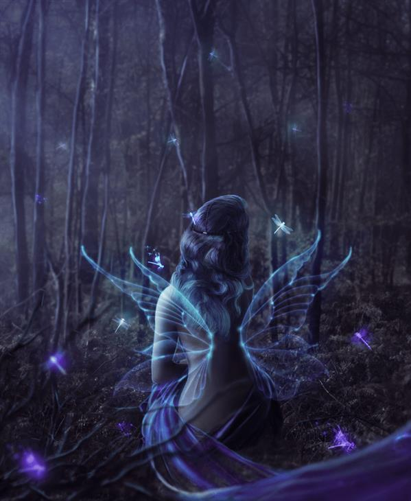 Create night fairy in the woods Photoshop tutorial