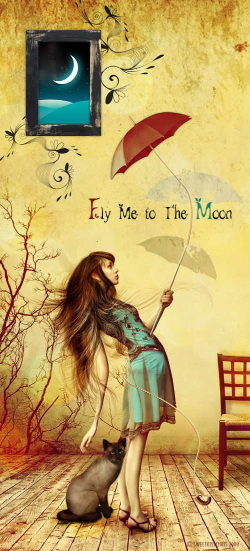 Fly me to the Moon by sweetKisschris photoshop resource collected by psd-dude.com from deviantart