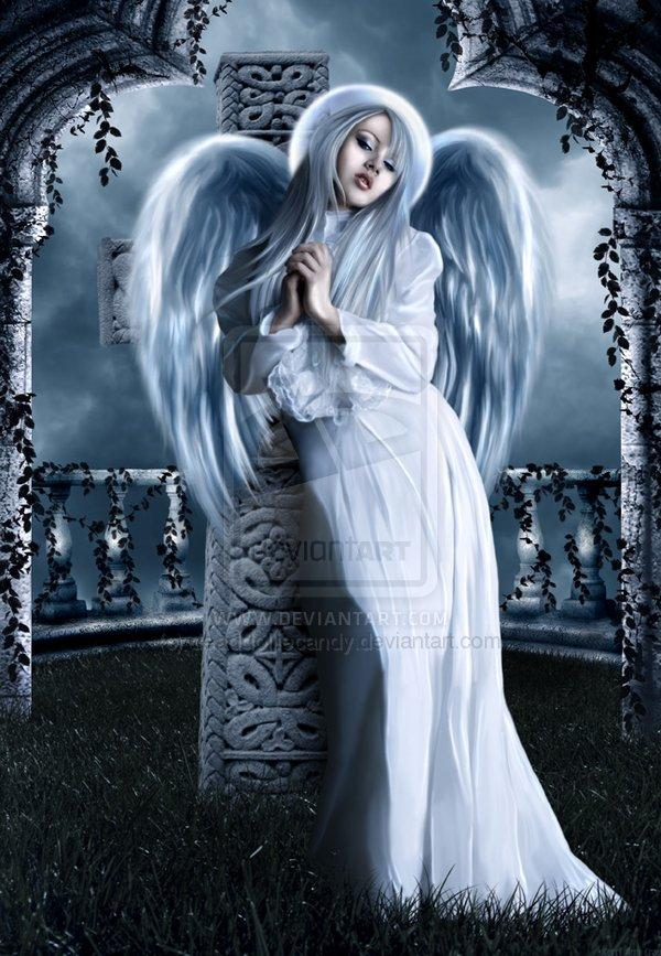 Johnnies
