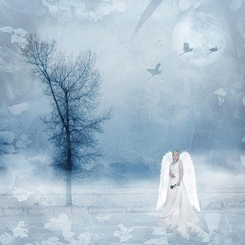 Winters Dream by brenda-starr photoshop resource collected by psd-dude.com from flickr