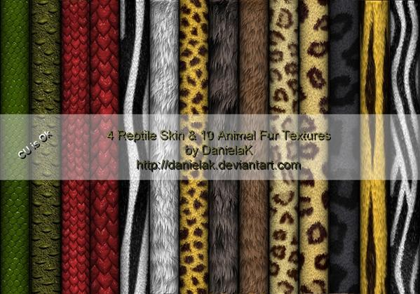 Reptile