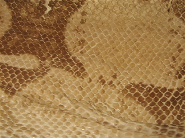 Scaly