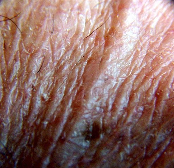 Skin by heart_windows_art photoshop resource collected by psd-dude.com from flickr