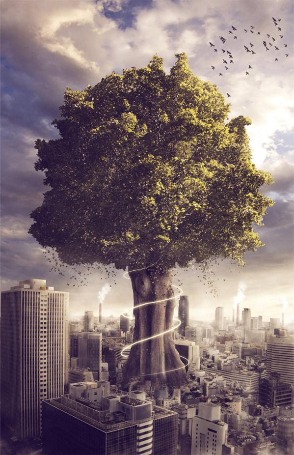 The Last Tree Photo Manipulation